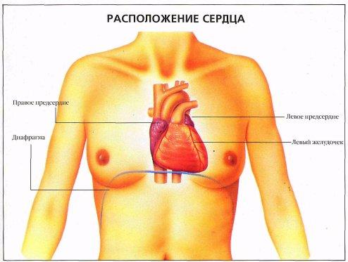 сердечная боль и невралгия