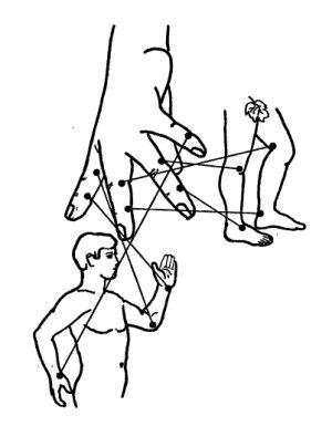 LiDa Капсулы для похудения ЛиДа от компании «Дали ...